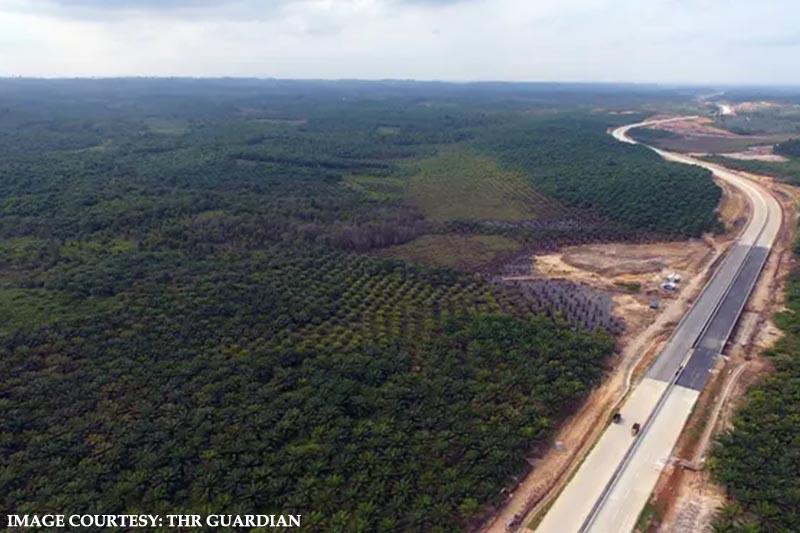 Jojo Widodo announces the plan to change capital to Borneo